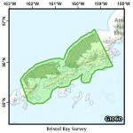 Bristol Bay Survey