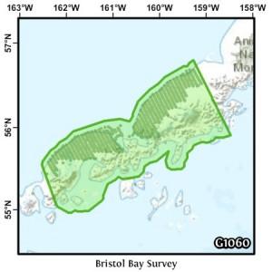 Bristol Bay Survey